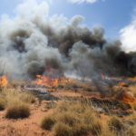 Firestick burning in outback Central Australia